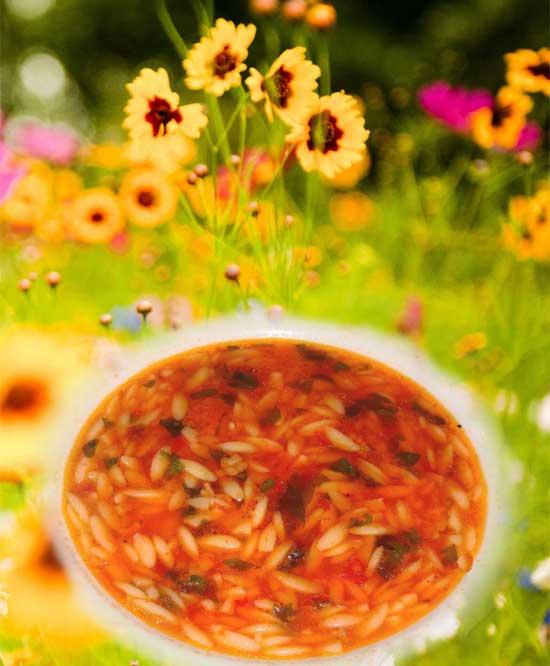 Domatesli arpa şehriye çorbası tarifi   Nasıl Yapılır